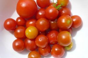 今朝のトマト