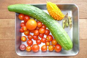 今日の収穫・トマト・キュウリ・ゴーヤ