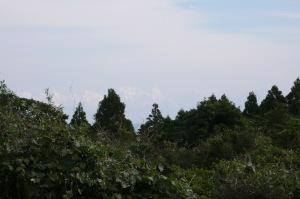 屋久島の家・海