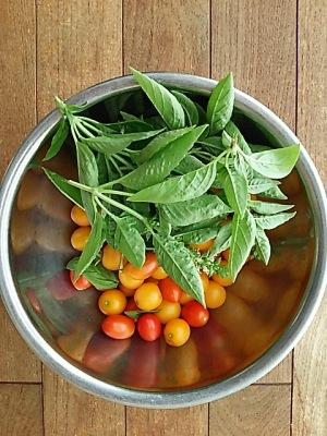 屋上菜園・収穫
